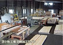 Hagarazai lineat Tomakomai Factory